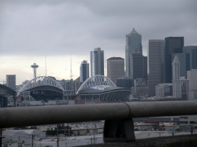 Seattle CLink and Needle